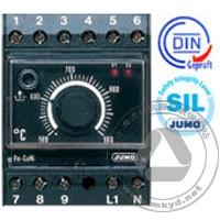 电子式安全温度监视器/限制器